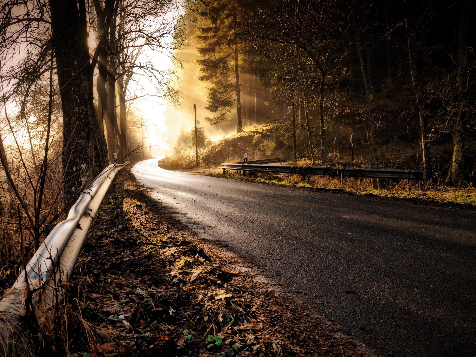 Breves consejos para una navidad segura en carretera